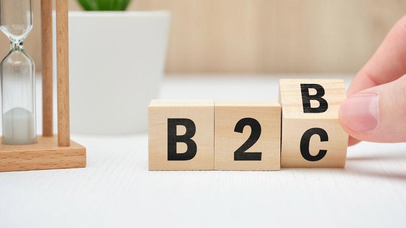 b2b-and-b2c-web-portal-development-company-in-dubai